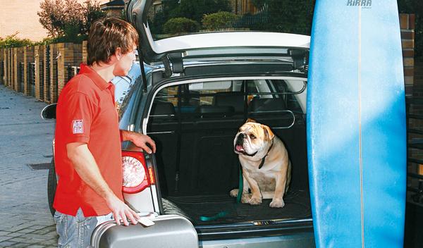 Viajar con el perro el el coche. Perro en el maletero