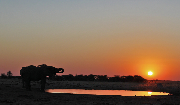 Atardecer en Botsuana