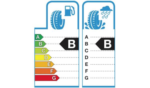 Eficiencia y Adherencia de los neumáticos