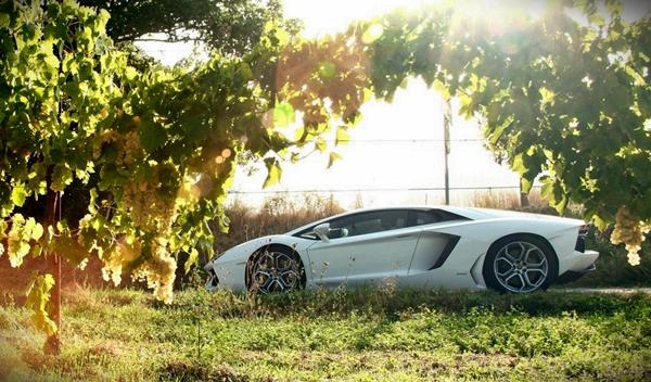 Lamborghini Aventador (este no es el Jackie Chan Edition)