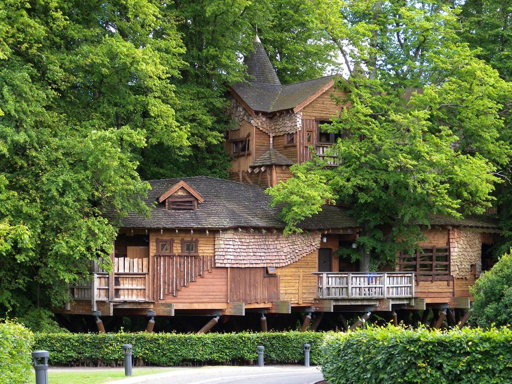 Restaurante The Treehouse