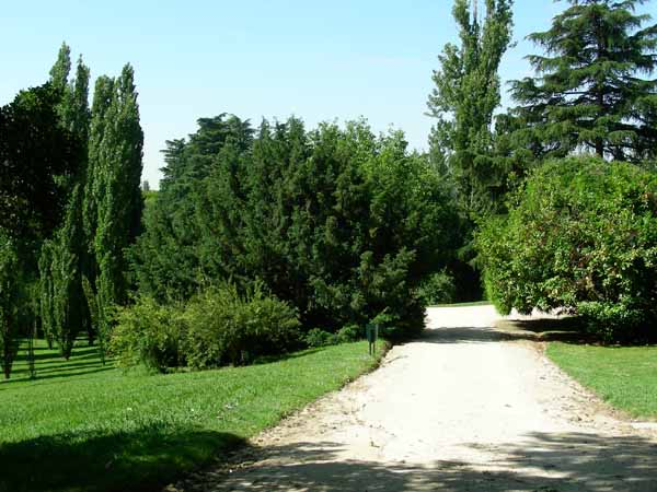 El Parque del Oeste es uno de los entornos mejor valorados por los runners, gracias a su pendiente