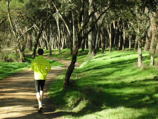 La Dehesa de la Villa es uno de los recorridos mejor valorados tanto para running como paseos a pie