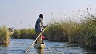 Okavango río delta