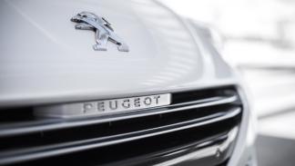 Peugeot RCZ 2012 detalle parrilla