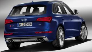 Audi SQ5 TDI trasera