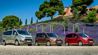 Gama Ford Tourneo