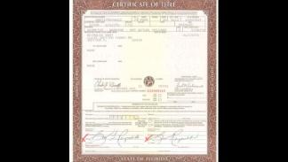 Pontiac Firebird Trans Am Special Edition - certificado