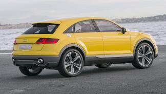 Audi TT Offroad zaga