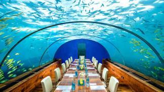 Restaurante Ithaa Undersea, Isla Rangali