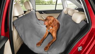 Accesorios para perros en el coche