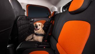 Smart ForFour para perros asientos