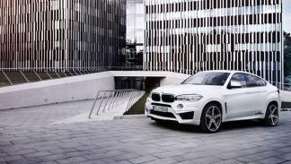 BMW X6 AC Schnitzer estatica