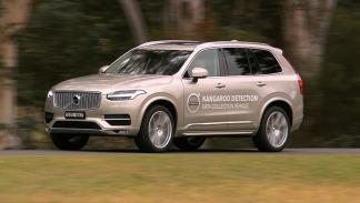 Sistema detección canguros Volvo 4