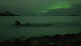 aurora boreal ballenas halloween 3