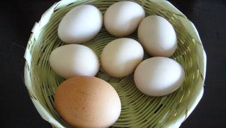 10 mitos alimentarios 4