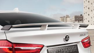 Hamann BMW X6 M50d detalle
