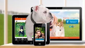 app upet veterinario