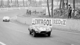 Jaguar D-Type 1955 Le Mans 1956