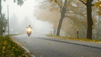 Conducción-niebla-moto-hojarasca