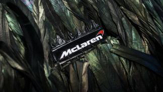 McLaren 570GT plumas detalle logo