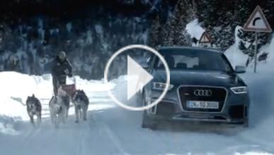 Un Audi RS Q3 contra un tríneo de perros, ¿cuál corre más?