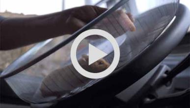 Volvo pone a un hámster al volante de un camión