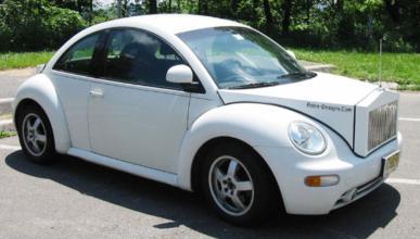 Beetle Rolls
