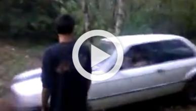 ¿Qué pasa si conduces un BMW E30 por el bosque?