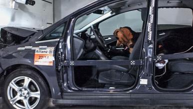 'Crash-test' para perros: este verano, ¡átalo bien!