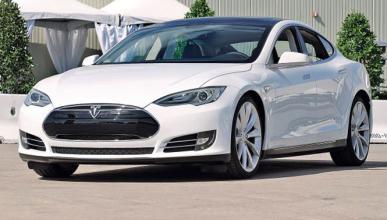 Piden que Tesla haga los coches sin ningún producto animal