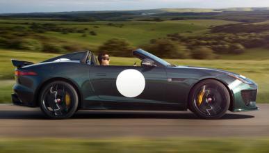 Pillan en España al Jaguar más difícil de ver