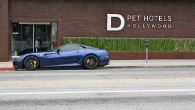 Hotel D Pets