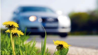 Consejos para tu coche en primavera