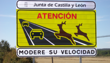 Los automovilistas, indefensos ante accidentes con animales