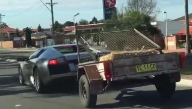Vídeo: un Lamborghini con un remolque cargado con cabras