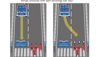 ¿A quién matarías con tu coche autónomo?
