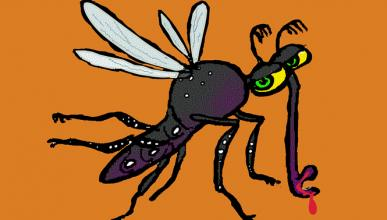 Seis cosas que quizás no sabías sobre los mosquitos