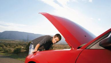 Este es el perfil de un 'manitas' del coche