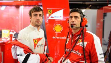 Fernando Alonso - Andrea Stella - Ferrari - 2013