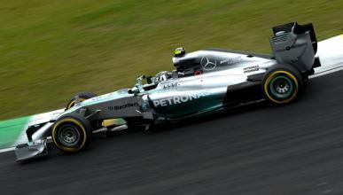 Fórmula 1: Clasificación GP Brasil 2014. Pole de Rosberg