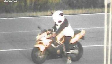 Un motorista disfrazado de panda, multado en Estados Unidos
