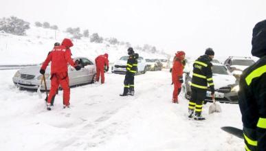 AP-6 nevada