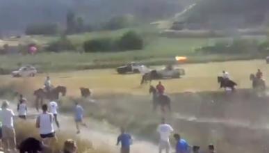 PACMA denuncia el atropello de un toro en un encierro en Centenera