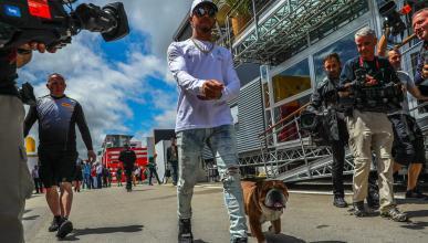 Lewis Hamilton y su perro Roscoe