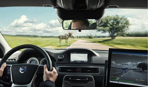 El Volvo Animal Detection ayuda a reducir las consecuencias de los atropellos