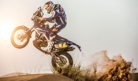 Cyril Despres RAlly Dakar 2014