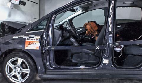 crash test perro