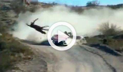 Vídeo: Un piloto de rally argentino atropella a un caballo