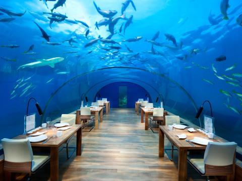 Restaurante Ithaa Undersea
